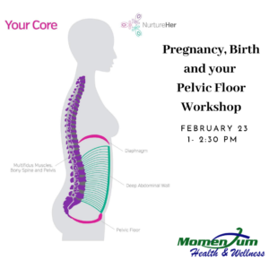 Pregnancy, Birth and your Pelvic Floor